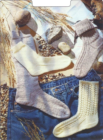 PETER GREGORY 4PLY SOCK KNITTING PATTERN 905