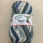 OPAL 4 PLY SOCK WOOL 100 GRAM BALL SPORT WELLBEING (9561)